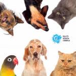 animali domestici ed EM